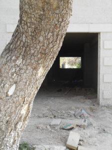 6-hertz-1-left-ka-tree